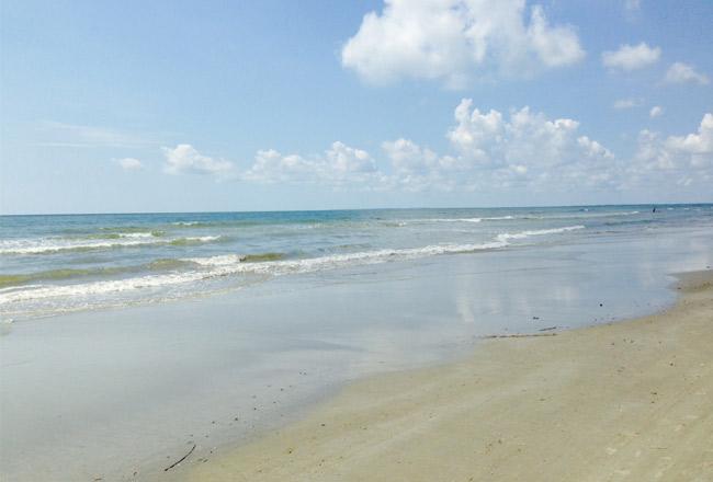 BeachshotSPines
